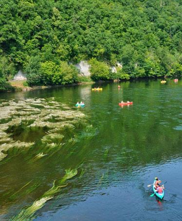 dordogne-valley-france-best-destinations-for-nature-lovers