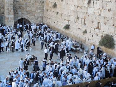 An der westlichen Begrenzungsmauer des Tempelberges beten die Juden