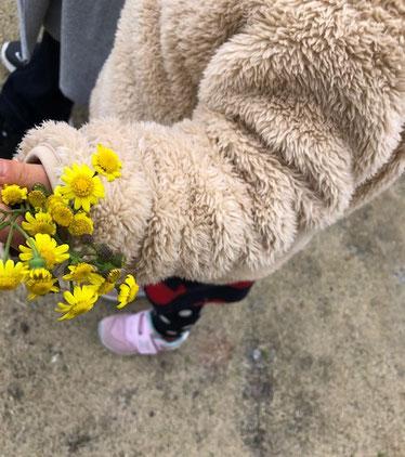 かわいこちゃんがお花見せてくれました。