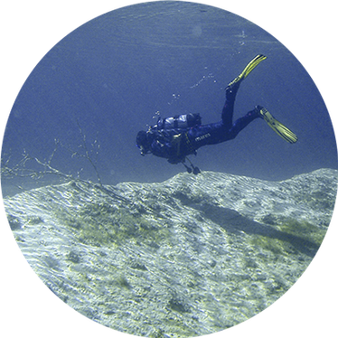 About Diving AG - Dekofoto Kontakt