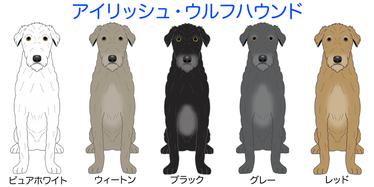 画像クリックで犬のイラスト紹介①ア行〜へ移動