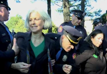Jill Stein anholdes ifm en klima protestaktion