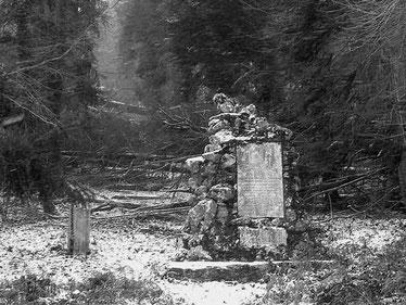 Forêt des Ecrivains Combattants (Combes - 34)