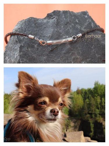Hundefell Schmuck
