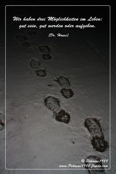 Fußspuren im Schnee (Bild vom 2.12.2010)