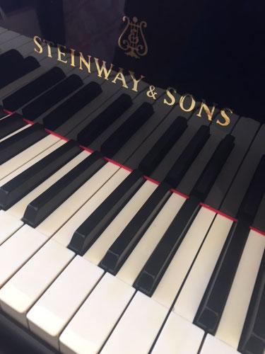 アートヴィレッジ杜季のギャラリーには素敵な写真とピアノがおいてあります。最高の静寂のなかで演奏をしていただけます。