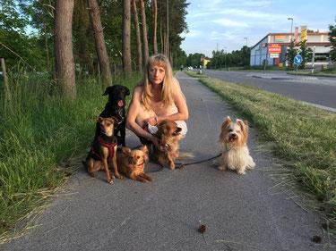 Frau Fleischmann und ihr Sohn Noah haben ein sehr gutes Händchen für unsere Pflegehunde.