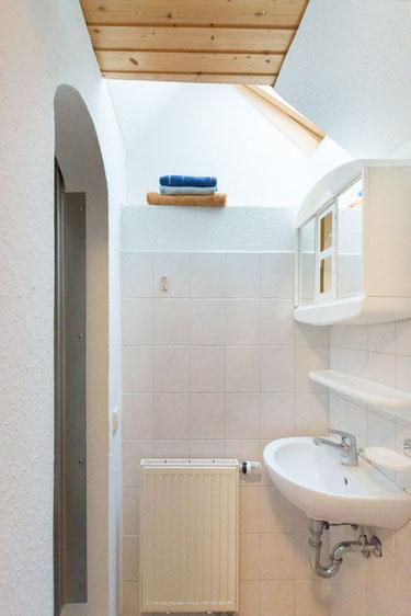 Kleines Bad mit Dusche und Toilette