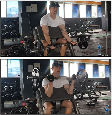 Bicep biceps workout exercise bicep curl gym fitness preacher curl