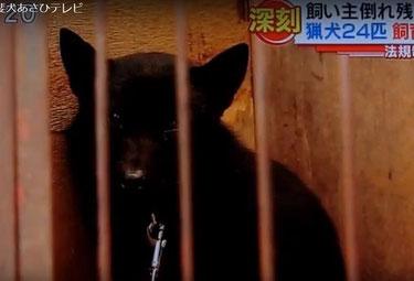 8月27日静岡あさひテレビ「とびっきり!しずおか」