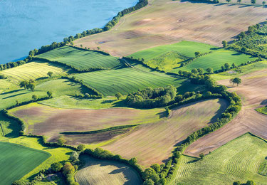 Aerial view ob hedges and lakeshore in Schleswig Holstein.