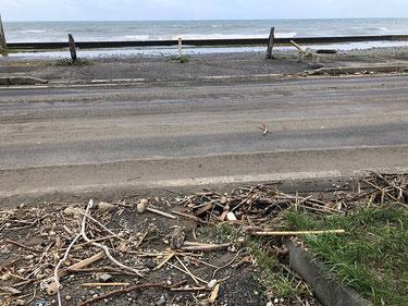 満潮と高波で道路まで押し寄せられた流木など・・