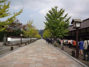 きれいな町並み。津和野は山口県にあるのかと思ってた!