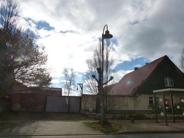Der Ökohof Fläming ist in Schopsdorf im Jerichower Land in Sachsen-Anhalt gelegen. Hier betreiben wir unsere Imkerei mit über 40 Bienenvölkern. Die Honigbienen sammeln fleißig auch in der Umgebung. Neben der Imkerei sind hier viele weitere Tiere zuhause.