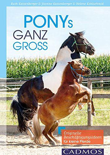 Ponys ganz groß: Originelle Beschäftigungsideen für kleine Pferde.