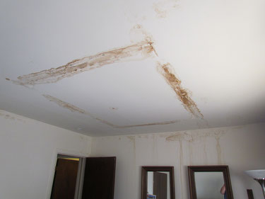 Now that the roof leak is fixed it is time for interior restorations