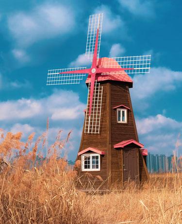 """""""Der Wind kann man nicht aufhalten, aber man kann Windmühlen bauen"""" - Organisationale Resilienz"""
