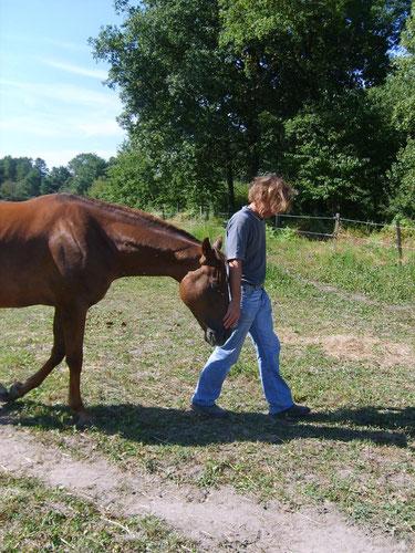 Psychothérapie : partez à la découverte de vous-même par la rencontre avec le cheval