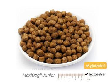 Welpen Trockenfutter von Reico MaxiDog Junior, Welpenfutter und heranwachsenden Hunden.