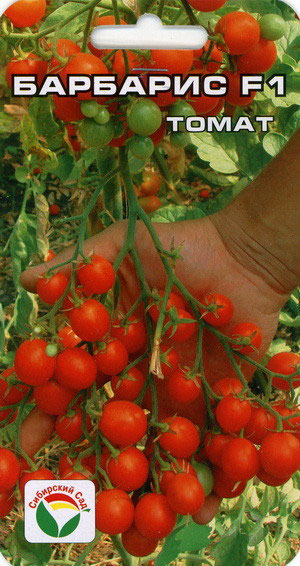 семена барбариса лучше садить в коже задачи такое