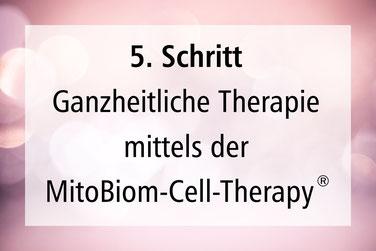 5. Schritt Ganheitliche Therapie MitoBiom-Cell-Therapy