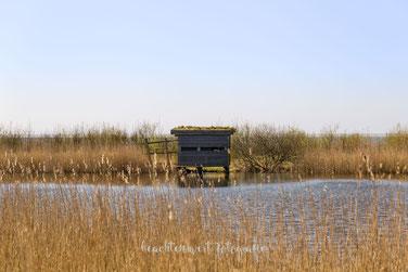 beltringharder koog, arlauschleuse, beachtenswert fotografie, fotograf, nordfriesland