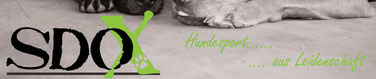 Hundesport Onlineshop SDOX