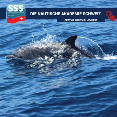 Schweizerische Seefahrtschule | Tradition und Innovation | www.schweizerische-seefahrtschule.ch