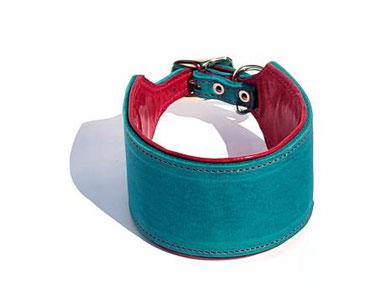 Halsband für Windhunde aus Leder in türkis mit Polsterung und Futterleder in pink Edelstahlverschluß