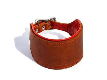 halsband aus Leder für Windhunde 6 cm breit mit Polster genäht Handarbeit Bolleband