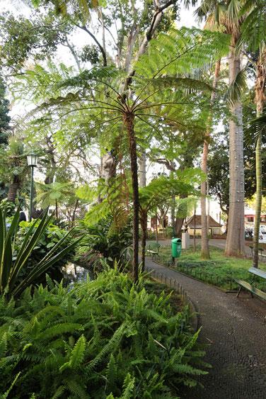 Stadtpark Funchal