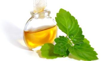 myRefan Parfümerie und Kosmetik - Patchouli Duft