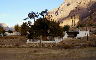 Bardara: Oston with a holy tree, which is said to protect the village from a recurrent landslide