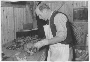 Der deutsche Arzt und Forensiker Günther Paul Schulz bei der Untersuchung von exhumierten Skelettteilen. Foto: unbekannt, 1954. Archiv KZ-Gedenkstätte Dachau