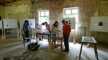 Teilnehmerinnen und Teilnehmer des 7. Internationalen Jugendworkcamps 2014 bei der Sanierung historischer Fenster der ehemaligen Lagerküche. Foto: A. Ehresmann, 22.8.2014