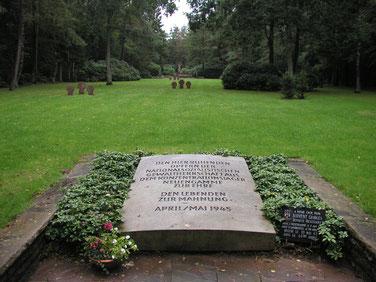 Das Gräberfeld II nachdem 1986 sämtliche Kissensteine entfernt wurden. Foto: A. Ehresmann, 23.9.2004