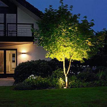 Faretti Per Illuminazione Alberi.Illuminazione Per Giardino E Viali Cosa Non Deve Mancare