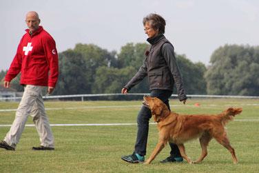 Hundeschule DreamTeam Schweizer Meisterschaft Obedience Clever Forever Emotional Honey  Freifolge