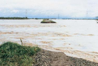 ついに石狩川の下新篠津築堤から水が溢れた(昭和56年8月上旬。江別市美原地区。北海道開発協会蔵)