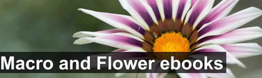 Free Macro and flower eBooks
