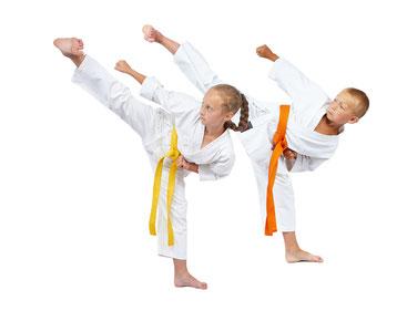 Kampfsport Schwäbisch Gmünd
