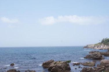 美しい海と山に育まれた越前雲丹