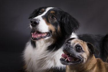 Ben und Lola