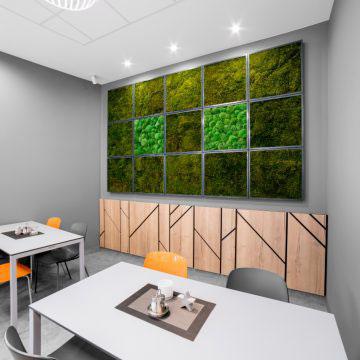 Jardín vertical interior con epipremnum de varios colores, maranta, elementos de musgo y iluminación mejorada