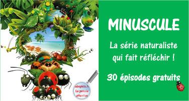 MINUSCULE (30 épisodes)