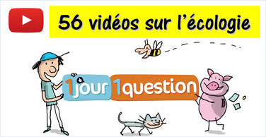 1 JOUR 1 QUESTION: 56 animés