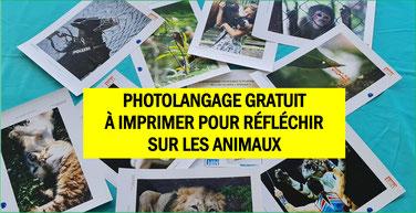 PHOTOLANGAGE ANIMAUX gratuit à imprimer