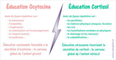 Education OCYTOCINE, c'est quoi?