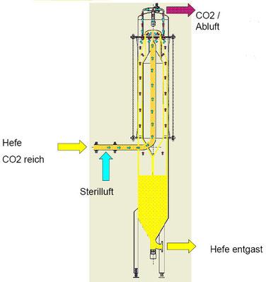 Hefe Vitalisierung VitaSius Hefeentgasung Hefe Entgasung yeast vitalization yeast vitalisation yeast degassing