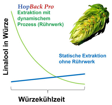 extraction curve hoparoma Exktraktionskurve Hopfenaroma HopBack high efficiency  Aroma Extraktion Doldenhopfen whole hops extraction late hopping hop flavor